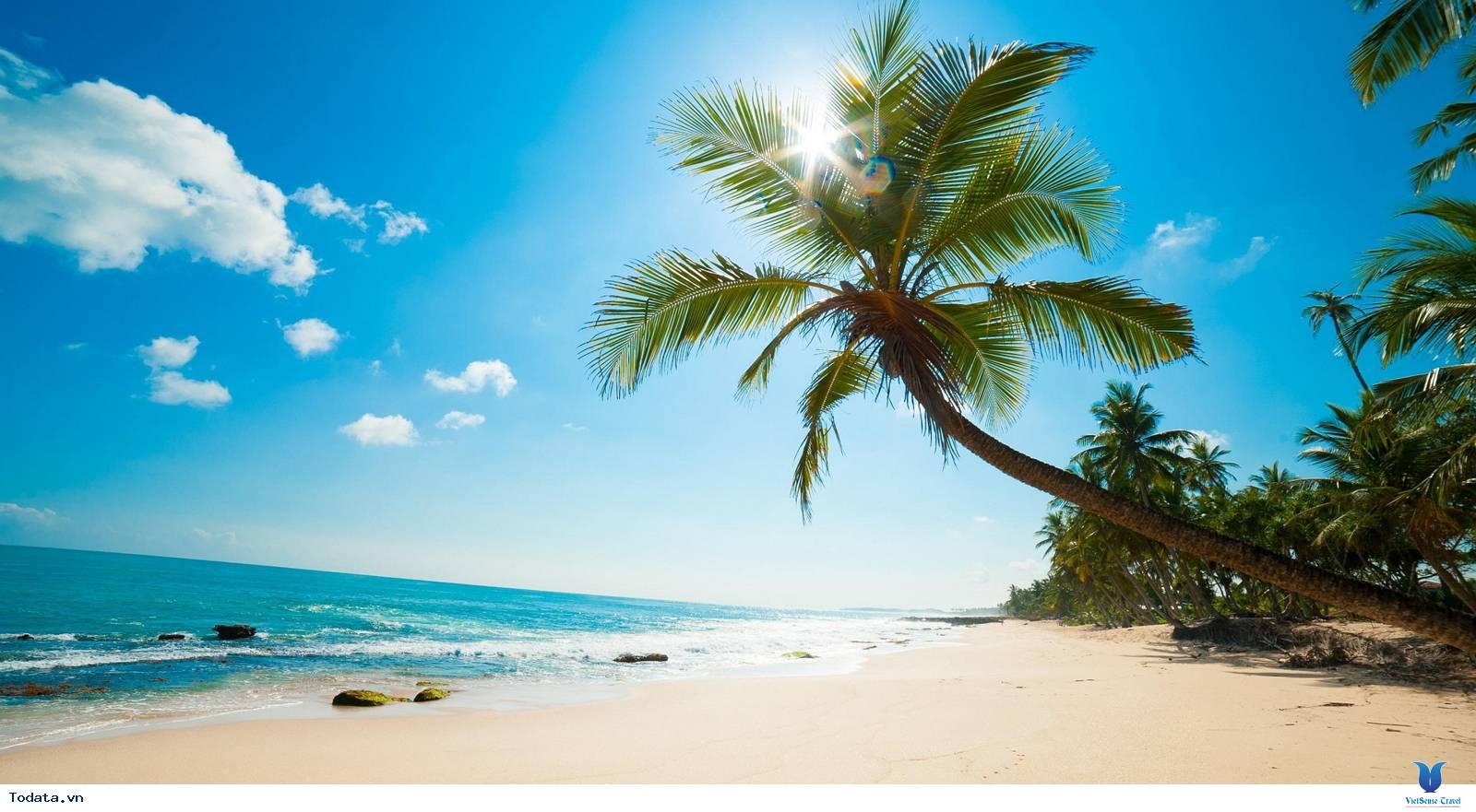 Khám Phá Bãi Sao- bãi biển đẹp nhất Việt Nam - Ảnh 1