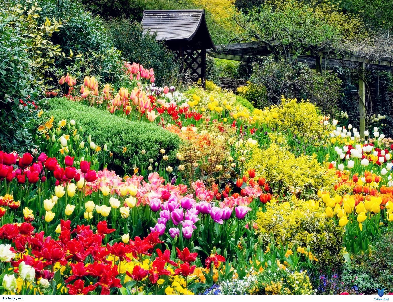 Khám phá vẻ đẹp của thành phố ngàn hoa - Ảnh 2