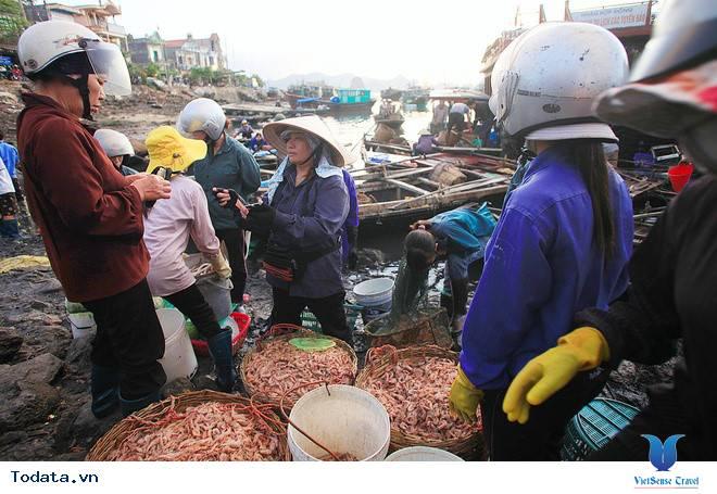 Nhất  Định Phải Ghé Chợ Hải  Sản Khi Đến Cô Tô - Ảnh 4
