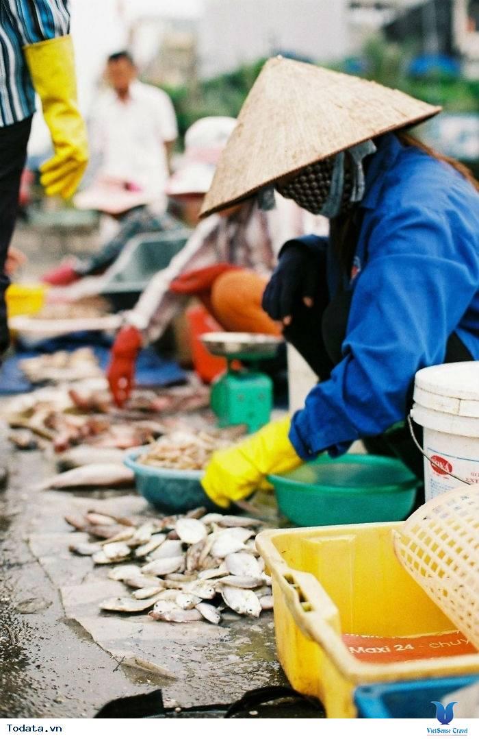 Nhất  Định Phải Ghé Chợ Hải  Sản Khi Đến Cô Tô - Ảnh 8