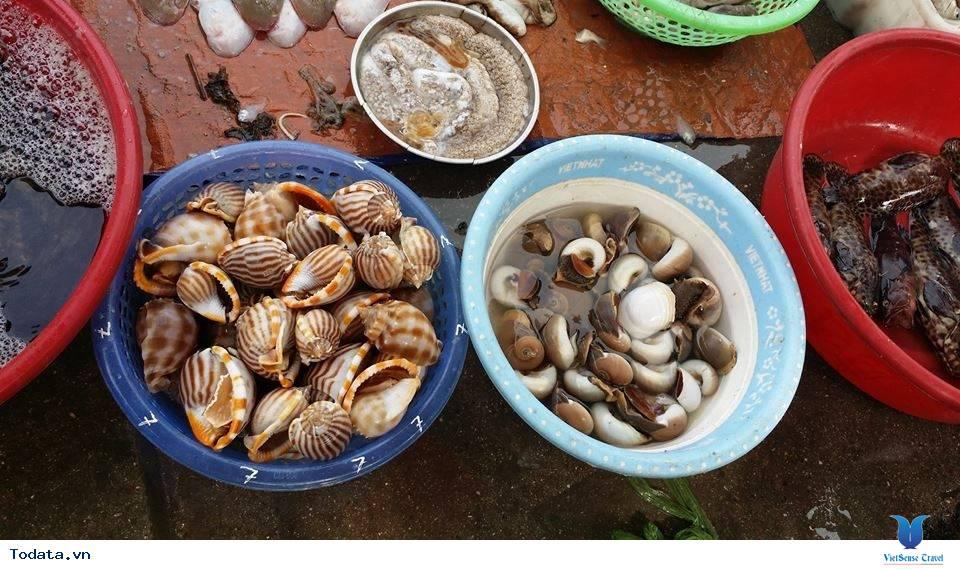 Nhất  Định Phải Ghé Chợ Hải  Sản Khi Đến Cô Tô - Ảnh 7