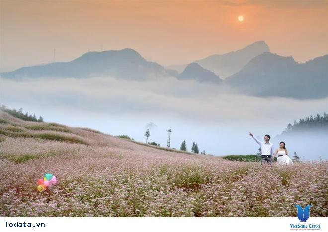 Những Điểm Chụp Ảnh Cưới Cùng Hoa Tam Giác Mạch Ở Hà Giang - Ảnh 3
