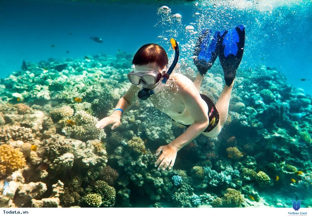 những điều nên biết khi đi du lịch côn đảo - Ảnh 3