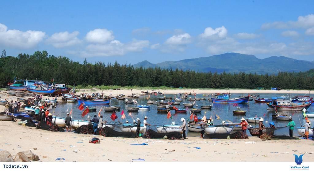 Rộn ràng mùa cá chuồn biển đảo Lý Sơn - Ảnh 4
