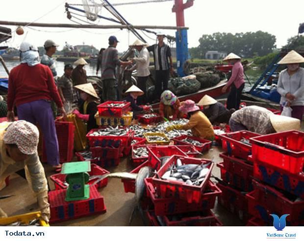 Rộn ràng mùa cá chuồn biển đảo Lý Sơn - Ảnh 2