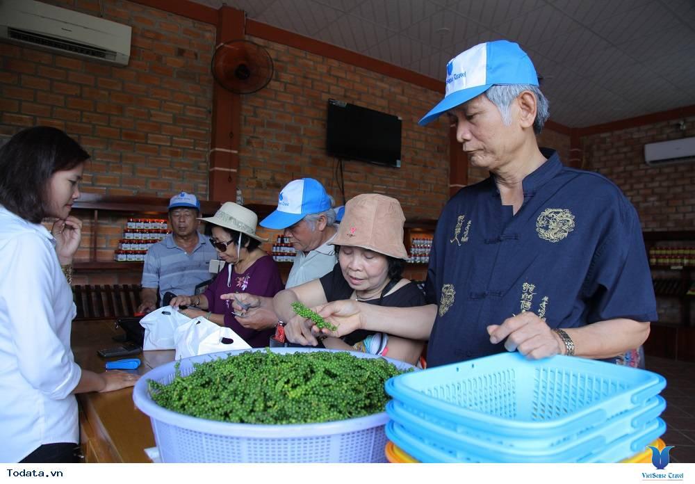 Tour Du Lịch Hà Nội Phú Quốc 4 Ngày 3 Đêm Dịp Hè - Ảnh 1