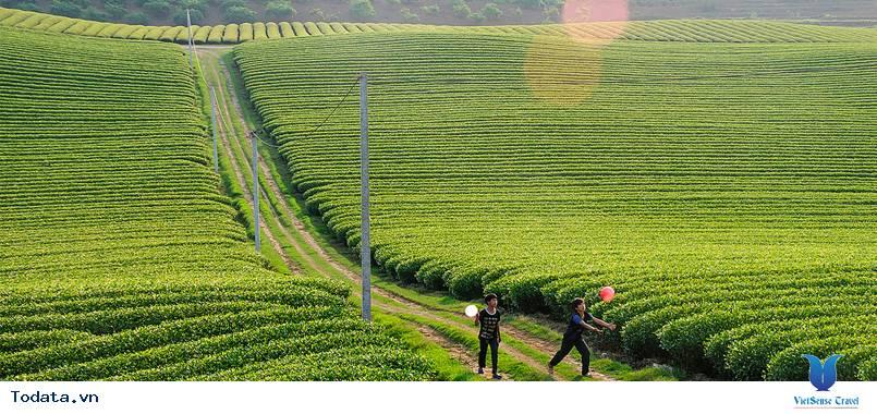 Tour Mộc Châu - Điện Biên: Hành Trình Khám Phá Lịch Sử - Ảnh 1