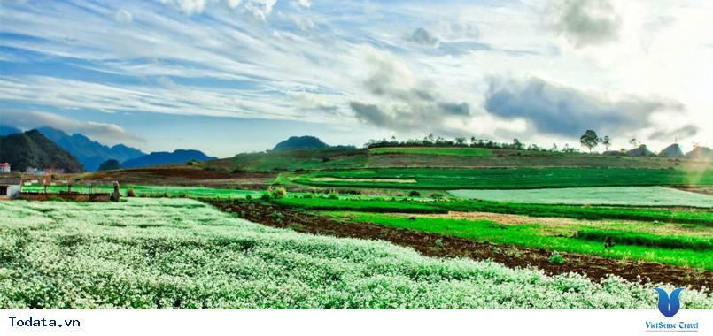Tour Mộc Châu - Điện Biên: Hành Trình Khám Phá Lịch Sử - Ảnh 2
