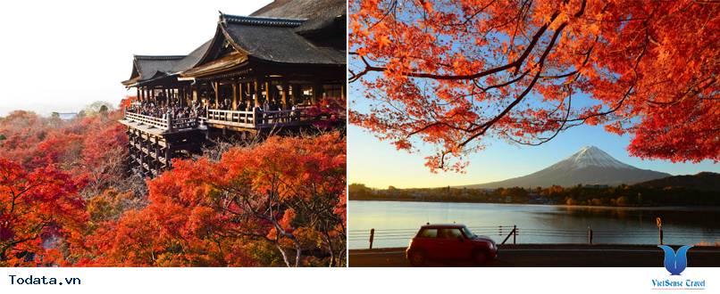 Tour Du Lịch Nhật Bản Mùa Lá Đỏ - Ảnh 1