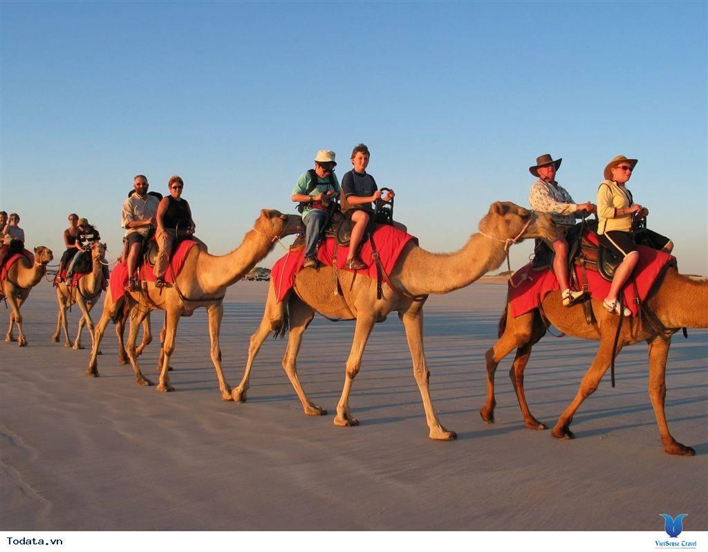 Trải Nghiệm Có 1 Không 2 Trên Sa Mạc Safari - Ảnh 2