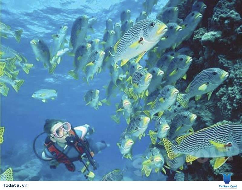 Trải nghiệm những hoạt động khác ở Maldives. - Ảnh 2
