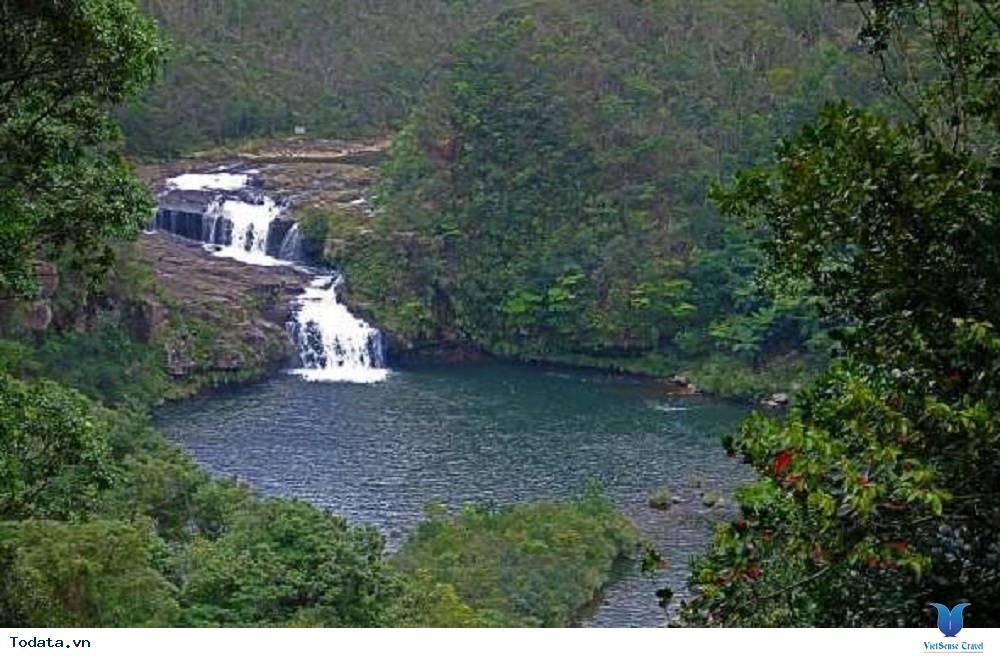 Vẻ đẹp hoang sơ của hòn đảo Iriomote của Nhật Bản - Ảnh 2