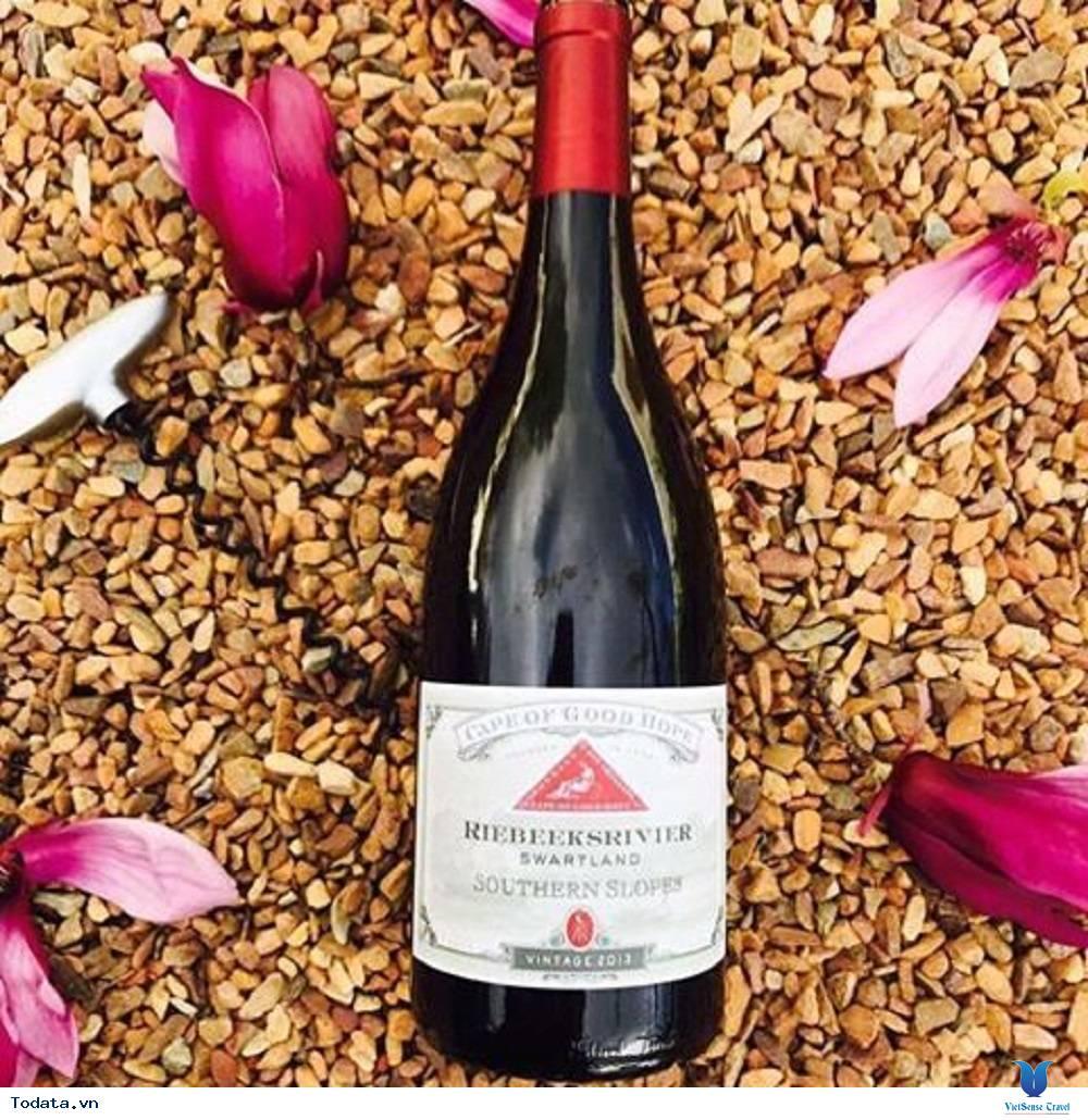 Vùng rượu vang Cape - Ảnh 3